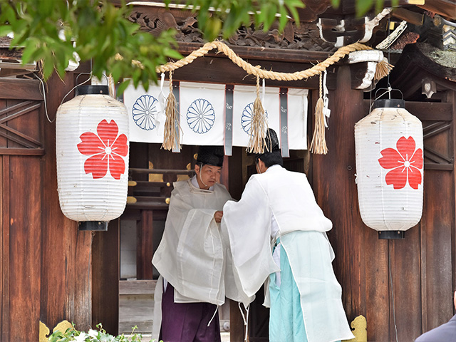 紫式部祭(平野神社)- 献茶式3