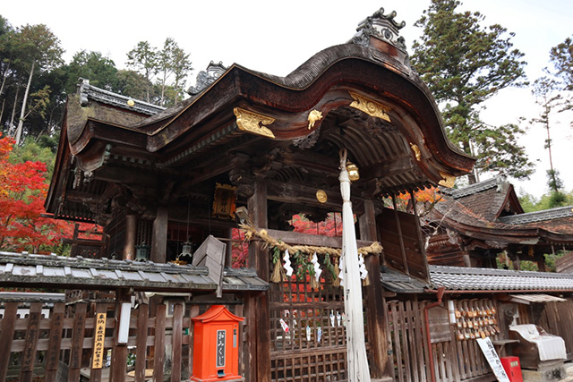 鍬山神社の紅葉3