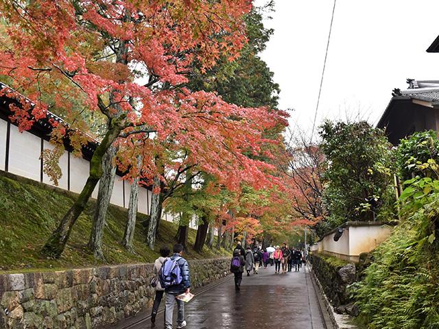 東福寺参道