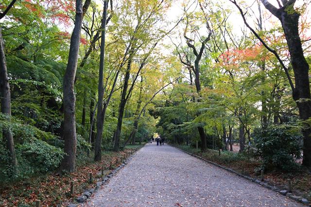 夏目漱石 - 糺の森
