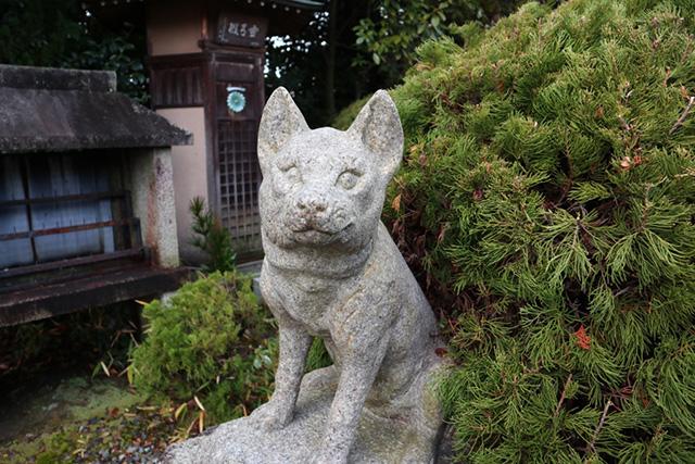 即成院 - 吽形の犬