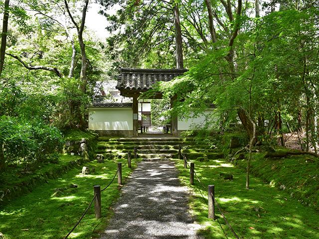 地蔵院 - 中門
