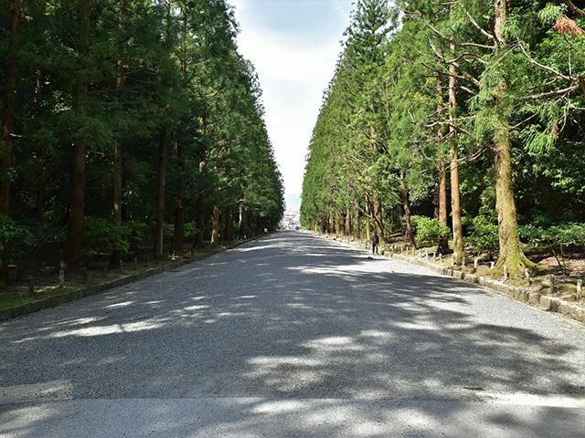 京都一周トレイル(東山コース)- 伏見桃山陵への道