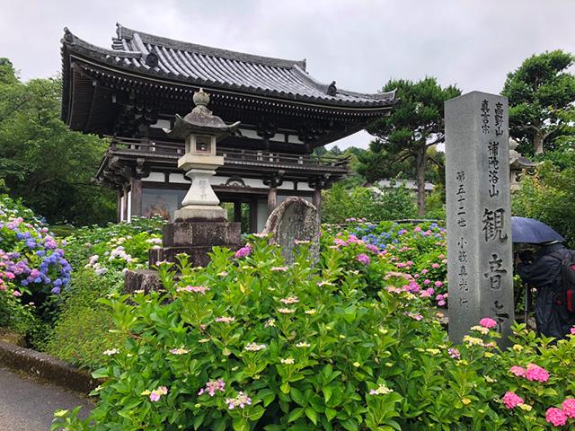 丹州観音寺(あじさい寺)1