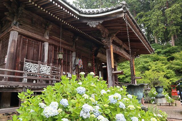 丹州観音寺(あじさい寺)4