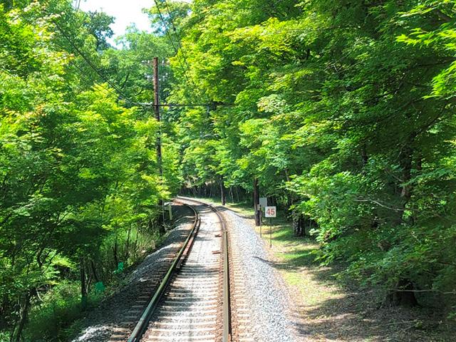 叡山電車 - もみじのトンネル