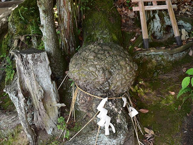 折上稲荷神社 - 授け脳