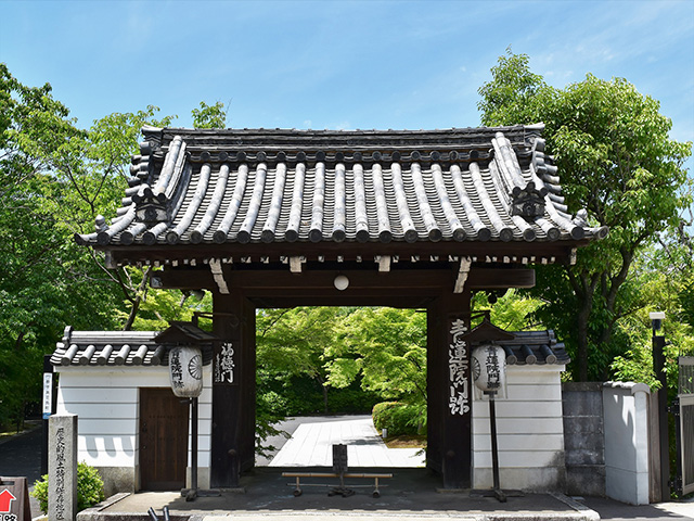 将軍塚青龍殿(京都一周トレイル)