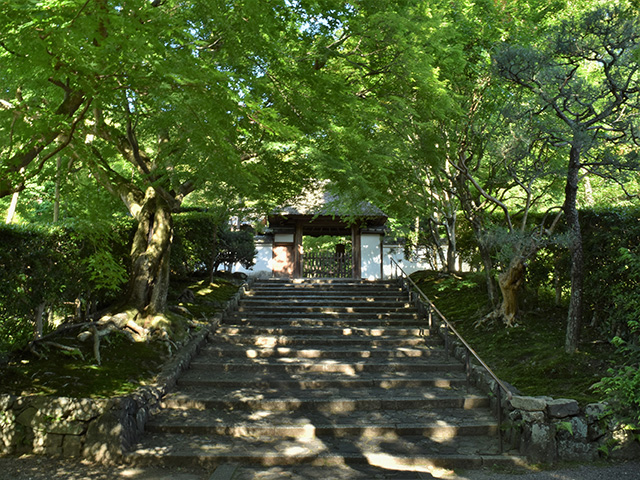 安楽寺(京都一周トレイル)