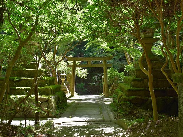 大山祇神社1(京都一周トレイル)