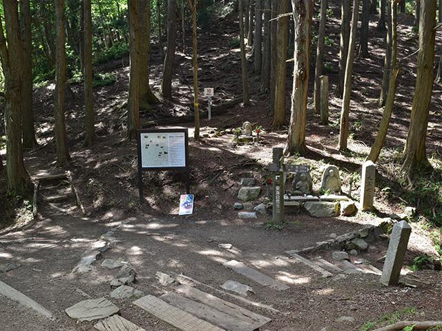 峰辻(京都一周トレイル)