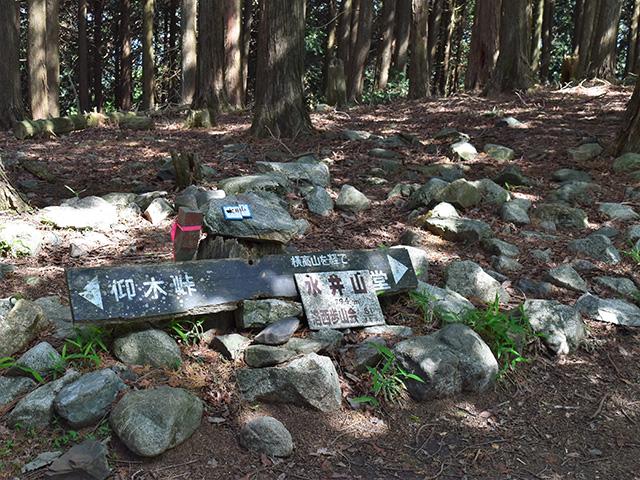 水井山1(京都一周トレイル)