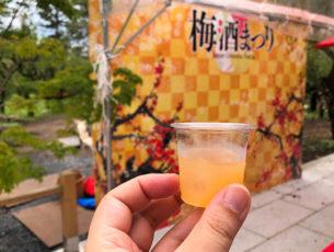 全国梅酒まつりin京都EC