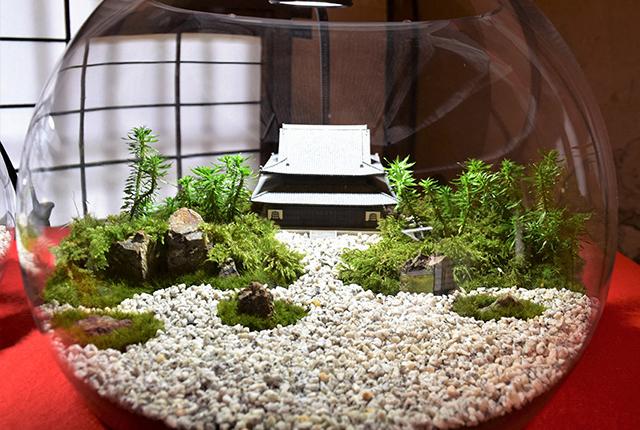モシュ印とコケ寺リウムEC