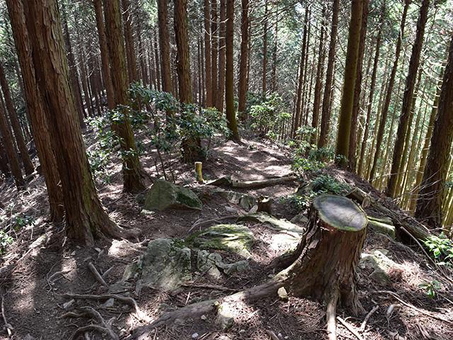 京都一周トレイル - 峠道1