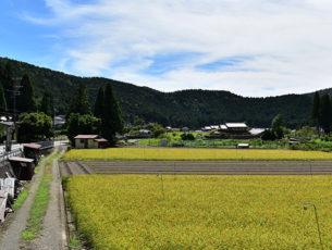 京都一周トレイルEC