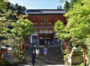 京都一周トレイル vol.9 EC