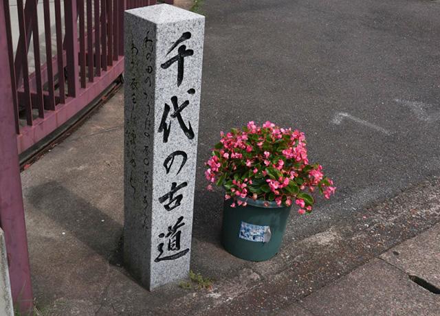 千代の古道5