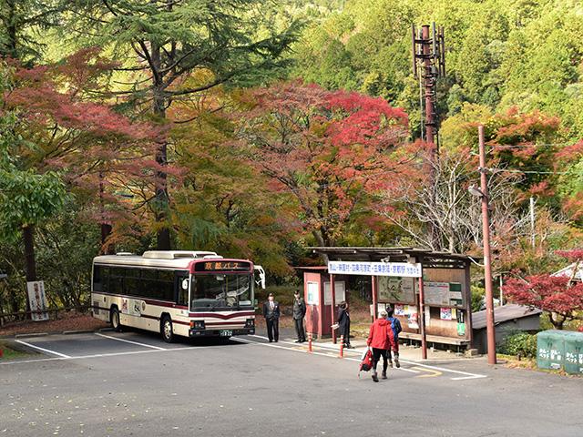 清滝1(京都一周トレイル)