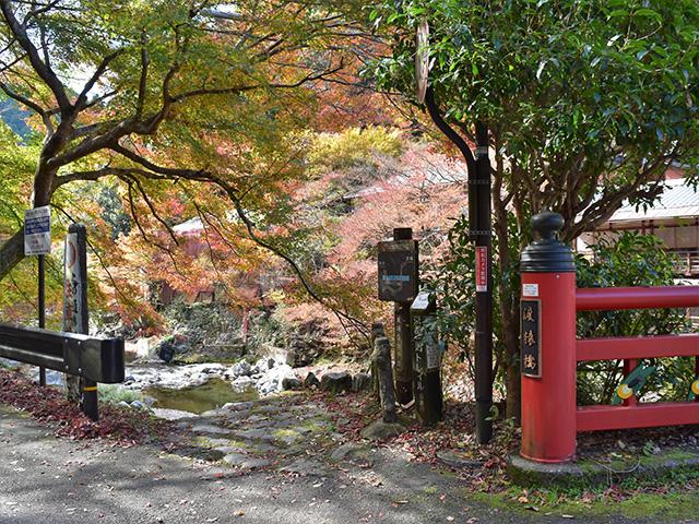 清滝2(京都一周トレイル)