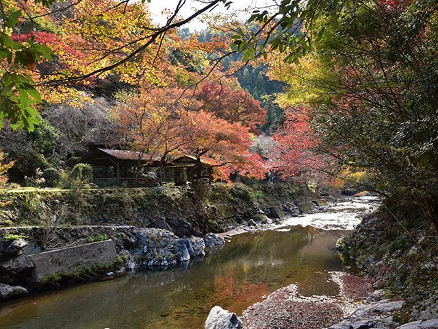 金鈴峡1(京都一周トレイル)