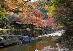 京都一周トレイル Vol.10 EC