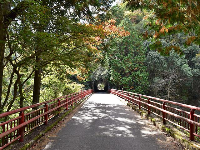 金鈴峡4(京都一周トレイル)