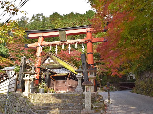 鳥居本1(京都一周トレイル Vol.11)
