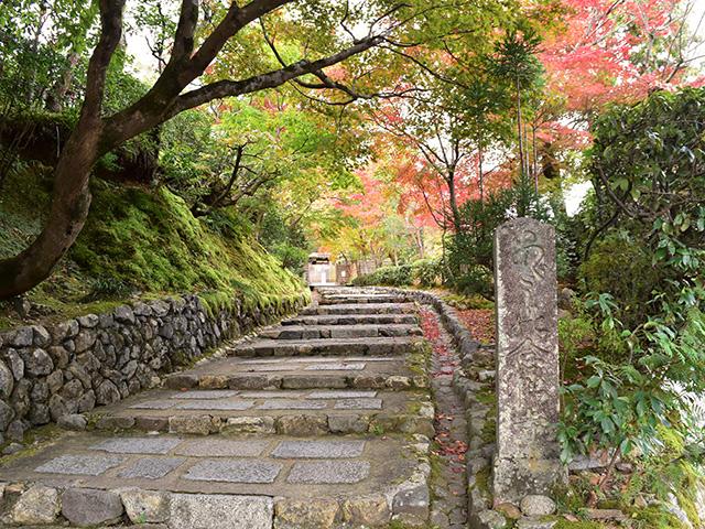 鳥居本2(京都一周トレイル Vol.11)