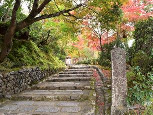 京都一周トレイル Vol.11 EC