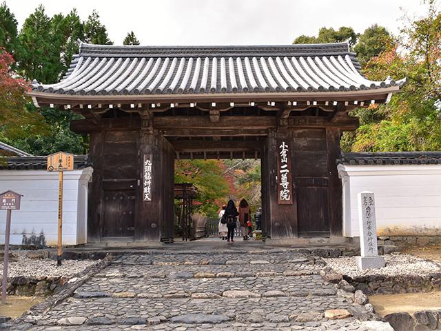 嵐山1(京都一周トレイル Vol.11)