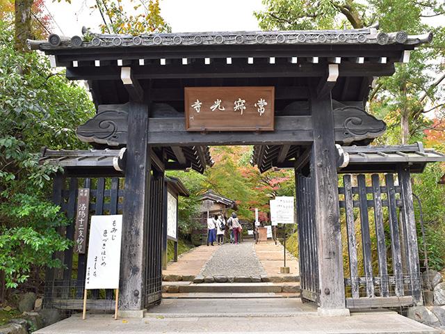 嵐山3(京都一周トレイル Vol.11)