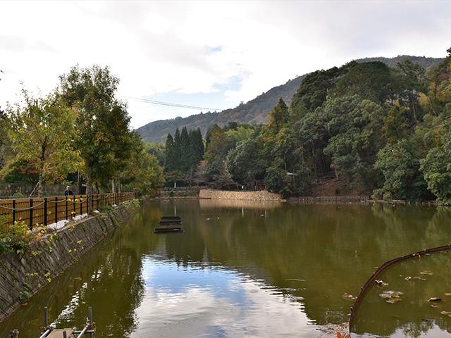 嵐山4(京都一周トレイル Vol.11)