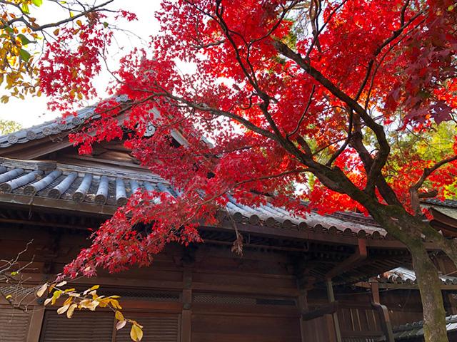 山崎の聖天さん7