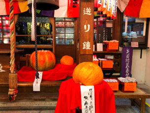矢田寺のかぼちゃ供養EC