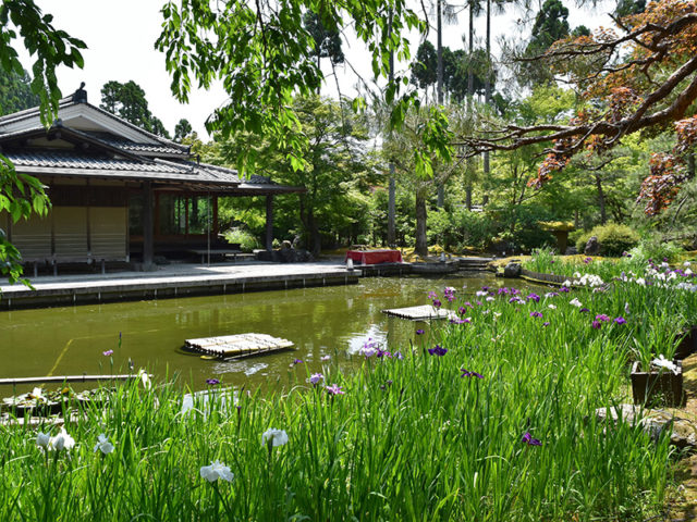 しょうざん庭園6