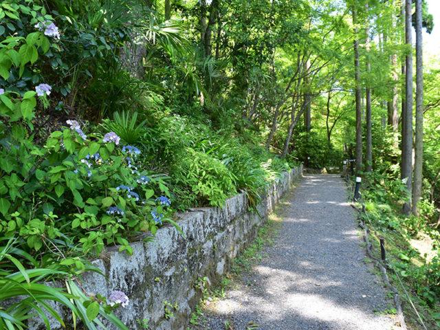 しょうざん庭園8