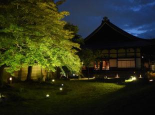 高台寺 庭園3