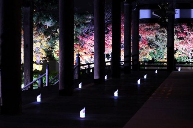 妙顯寺11