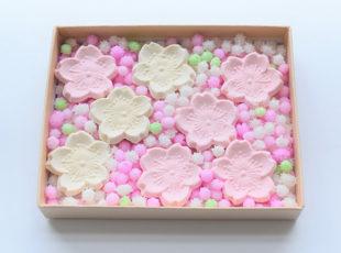 桜の季節に食べたい!春の和菓子3選