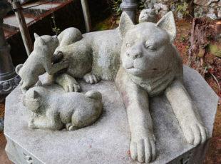 犬好き必見の寺社めぐり